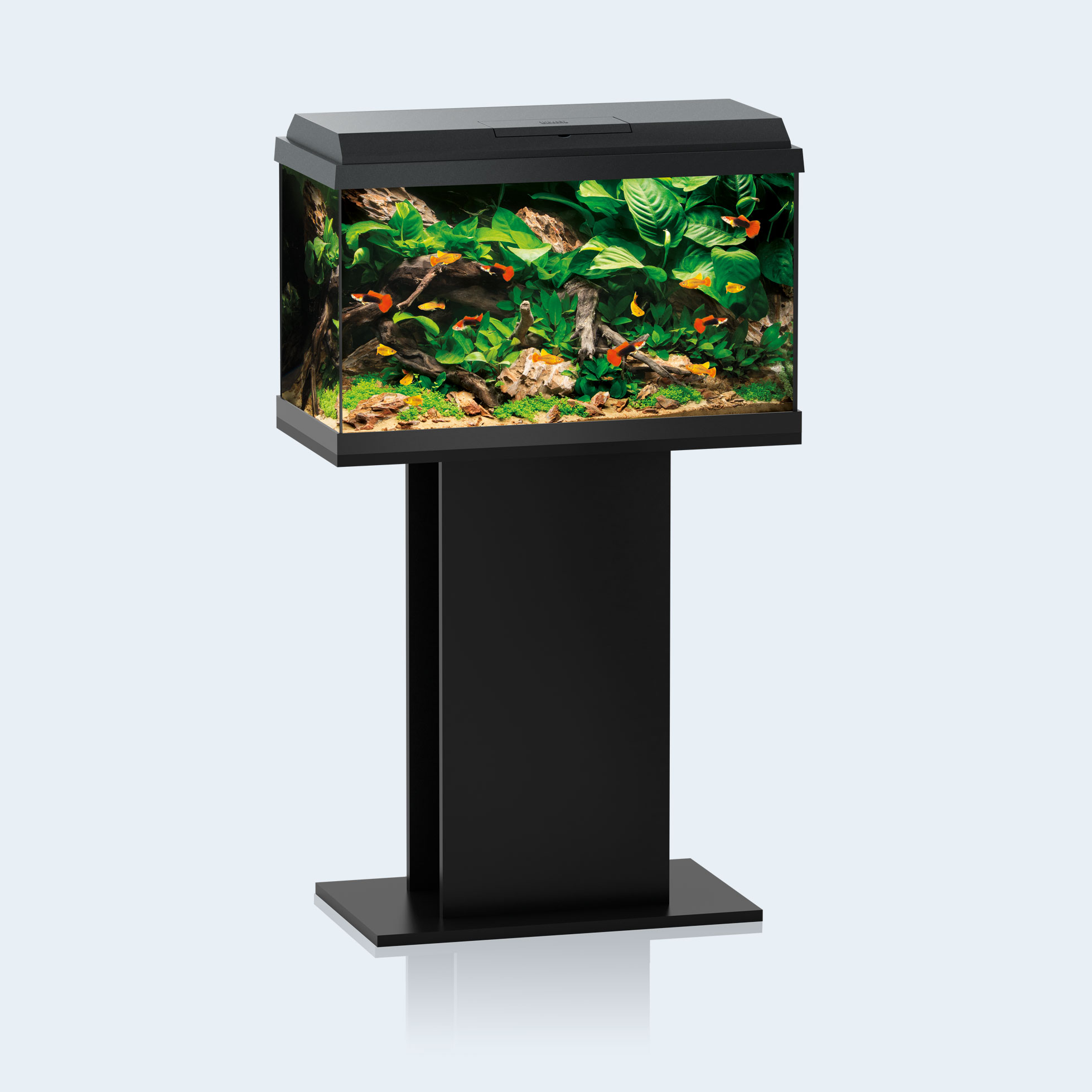 Juwel Aquarium | Primo 70 LED