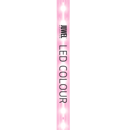 LED COLOUR