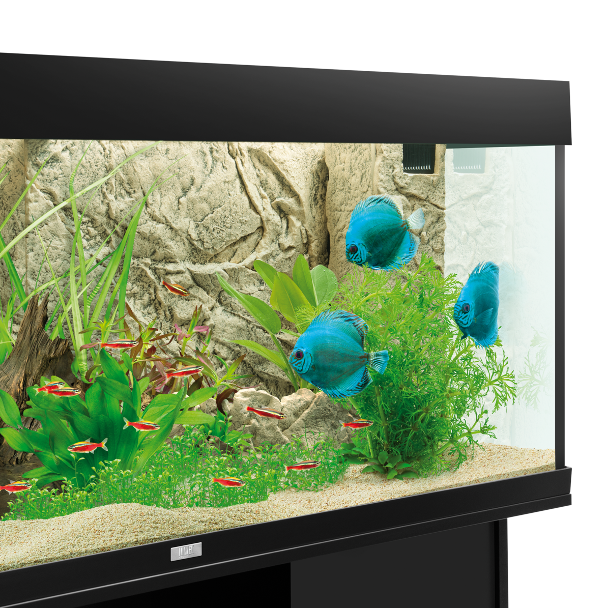 Juwel aquarium cliff light background purchase online for Aquarium decoration online