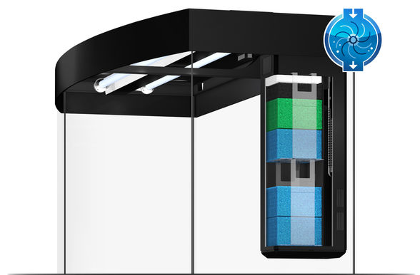 juwel aquarium vision 260 led purchase online. Black Bedroom Furniture Sets. Home Design Ideas